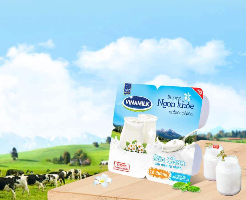 Các loại sữa chua cho trẻ