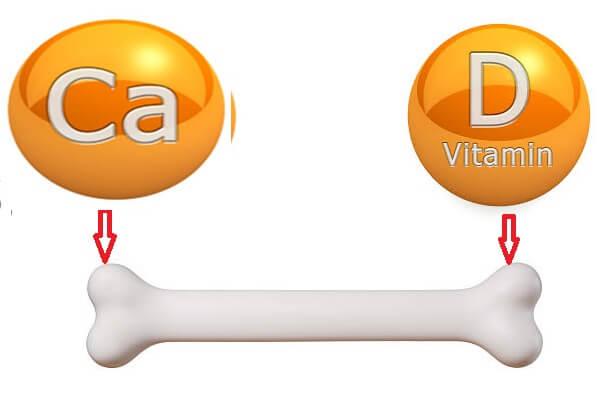 Chế độ dinh dưỡng khi bị loãng xương
