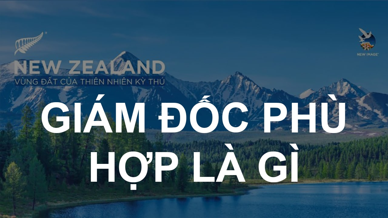Giam doc phu hop New Image